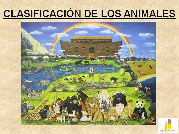 clasificacion de los animales. Clasificación de los animales